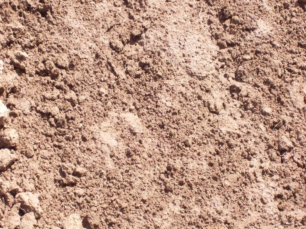 Top soil bing images for Dirt and soil